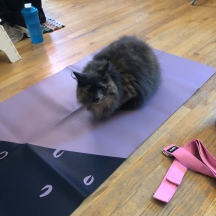 Dory working out